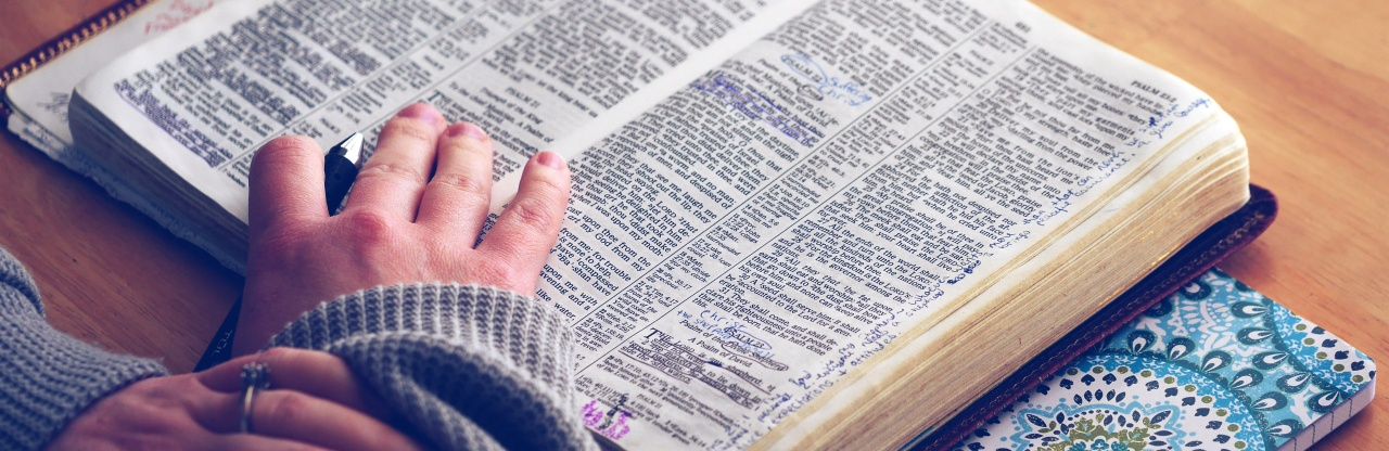 An Informal Guide to Study Bibles
